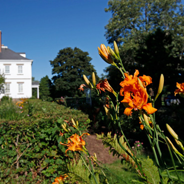 Prescott-House-Garden-002